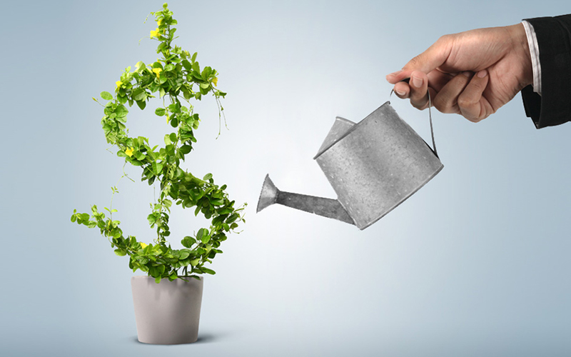 Financial Services | View Invest Lebanon SAL